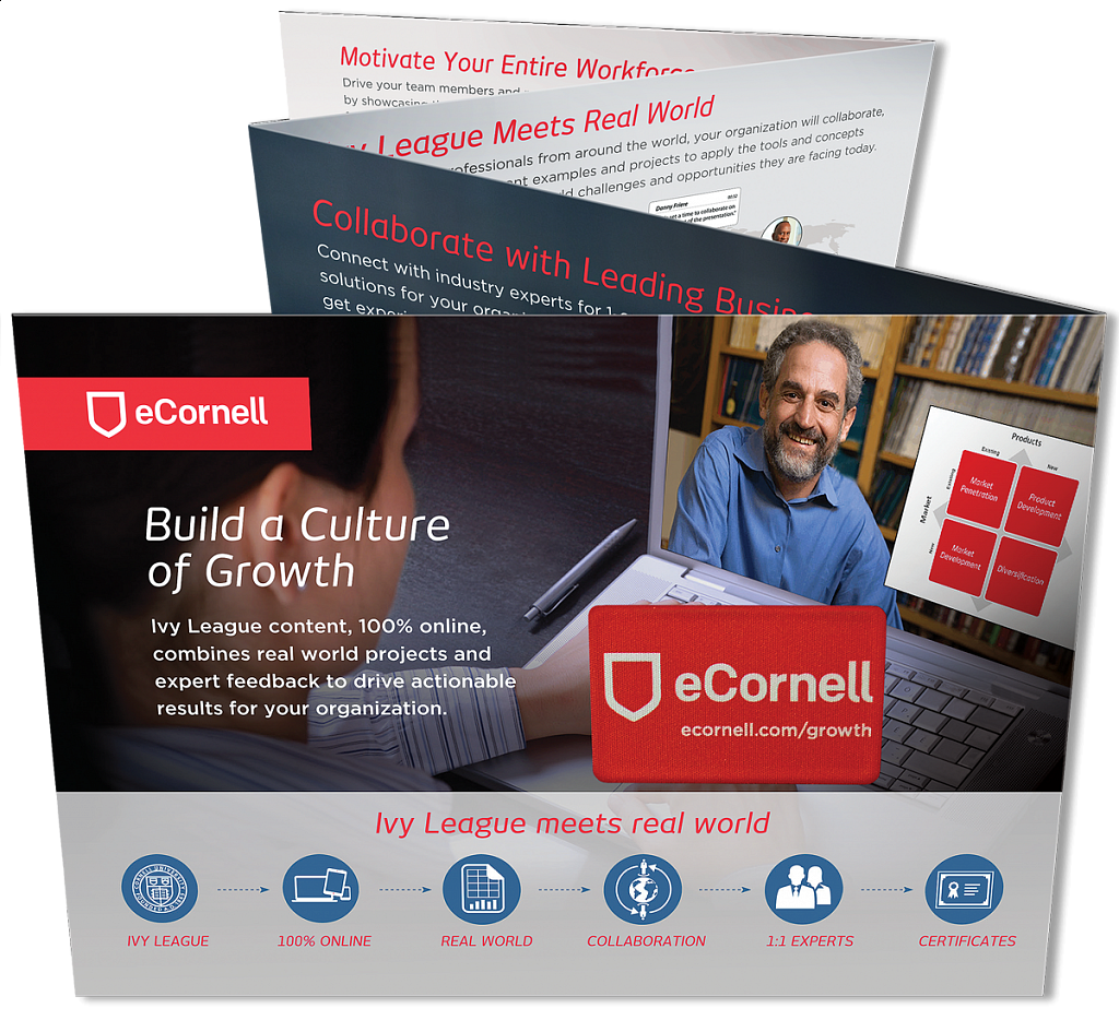 eCornell Accordian Fold Brochure with DigiClean